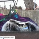 #Repost @streetartglobe ・・・ @tasso_maclaim in Sweden.  www.UpFade.com