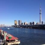 Tokyo is beautiful ❤️ #nofilter